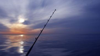 Day and Night Fishing